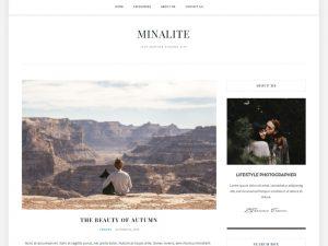 Darmowy motyw WordPress - MinaLite - Styczeń 2018